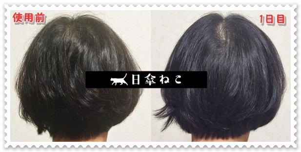 レプロナイザー3D効果03