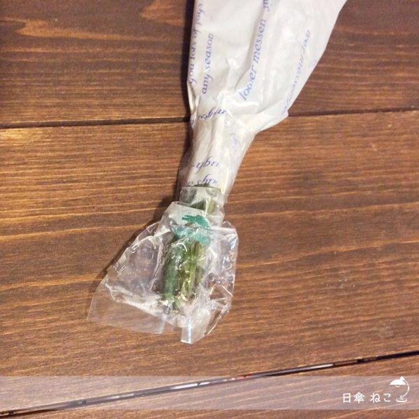ブルーミーライフ茎の栄養